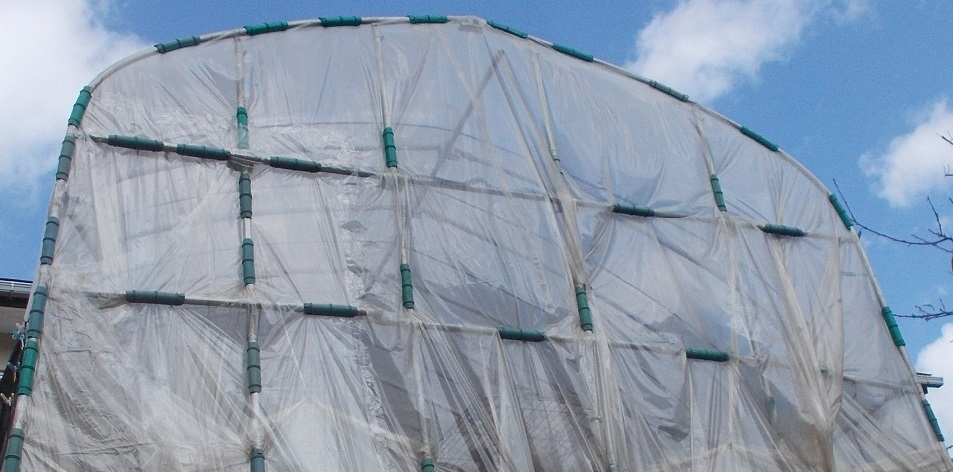 温室修理20181003-63