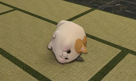 猫ミニオン