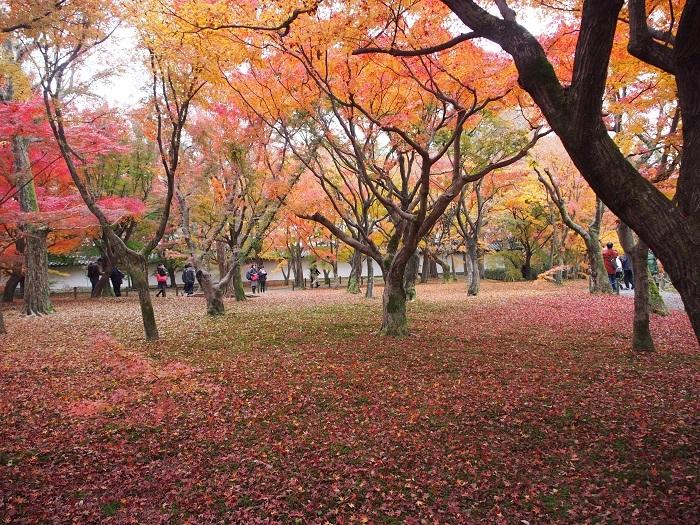 東福寺4_18_11_30