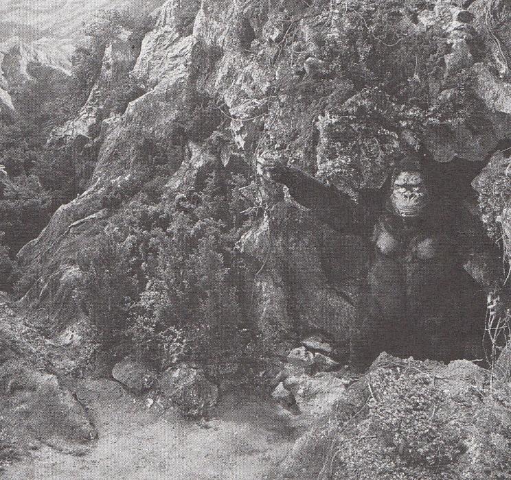 kong2053.jpg