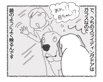 羊の国のラブラドール絵日記シニア!!「かわいい間」3