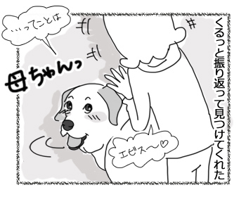 羊の国のラブラドール絵日記シニア!!「かわいい間」5