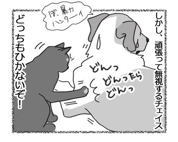 羊の国のラブラドール絵日記シニア!!「なにドン!?」4