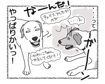 羊の国のラブラドール絵日記シニア!!「そりゃないデース」4