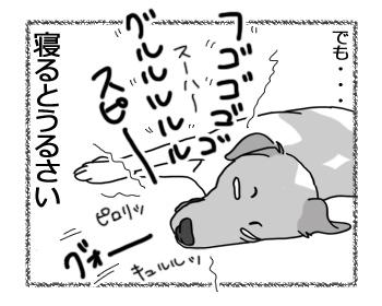 羊の国のラブラドール絵日記シニア!!「チェイスの緩急」4