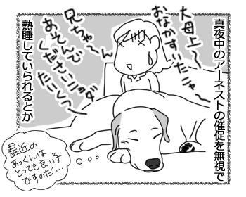 羊の国のラブラドール絵日記シニア!!「ストレス・フリーと・・・?」2