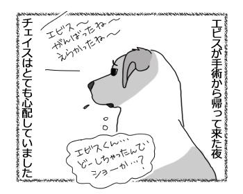 羊の国のラブラドール絵日記シニア!!「泣きっ面にまたハチ」1
