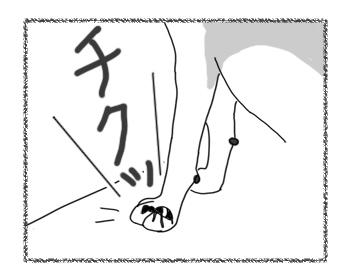 羊の国のラブラドール絵日記シニア!!「泣きっ面にまたハチ」3