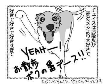 羊の国のラブラドール絵日記シニア!!「チェイス走り」1