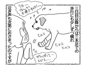 羊の国のラブラドール絵日記シニア!!「泣き虫エビス」3