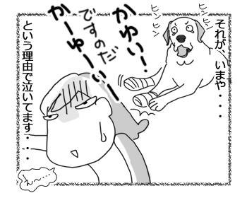 羊の国のラブラドール絵日記シニア!!「泣き虫エビス」4