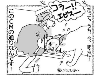 羊の国のラブラドール絵日記シニア!!「CMの通り」4