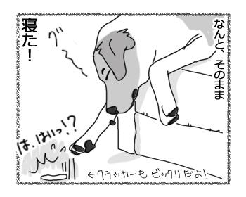 羊の国のラブラドール絵日記シニア!!「チェイスよ、マジか!?」4