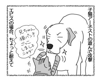羊の国のラブラドール絵日記シニア!!「子犬認定」3