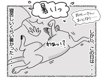 羊の国のラブラドール絵日記シニア!!「キャンペーン実施中」2