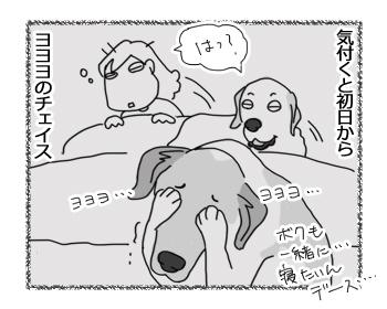 羊の国のラブラドール絵日記シニア!!「キャンペーン実施中」4