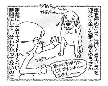 羊の国のラブラドール絵日記シニア!!「感動のゴール」4