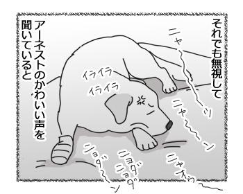 羊の国のラブラドール絵日記シニア!!「チェイスから一言」3