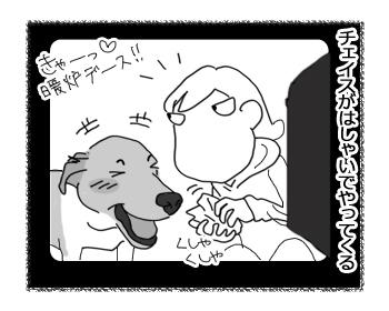 羊の国のラブラドール絵日記シニア!!「反省チェイスくん」2