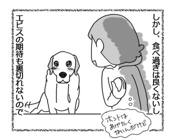 羊の国のラブラドール絵日記シニア!!「犬とゆで卵と私」2