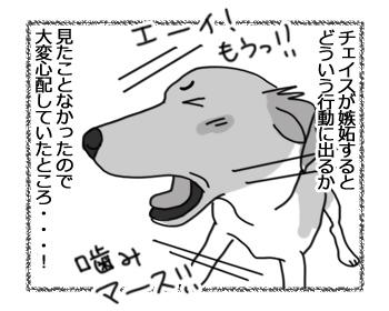 羊の国のラブラドール絵日記シニア!!「世界一わかりやすい嫉妬」2