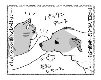 羊の国のラブラドール絵日記シニア!!「世界一わかりやすい嫉妬」3