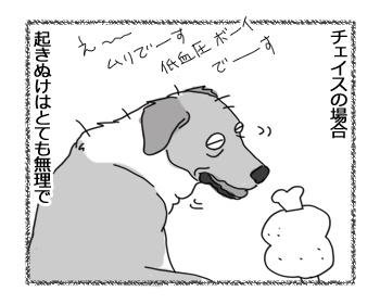 羊の国のラブラドール絵日記シニア!!「どっちがフツーDEショー?」3