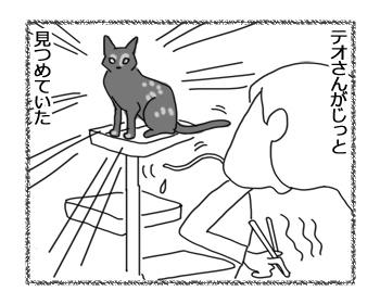 羊の国のラブラドール絵日記シニア!!「猫に学ぶ」2