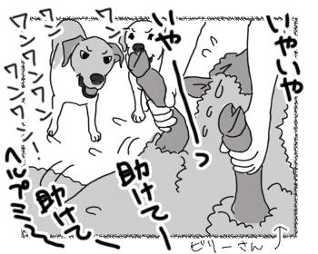 羊の国のラブラドール絵日記シニア!!「羊の爪切りとファームドッグ」3