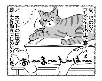 20042016_cat4.jpg