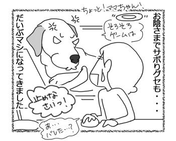 羊の国のラブラドール絵日記シニア!!「クロエちゃんのおかげ」2