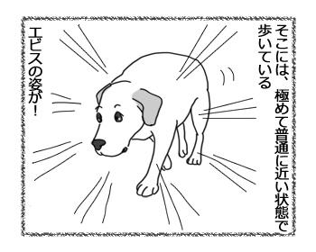 羊の国のラブラドール絵日記シニア!!「主演男優賞」2