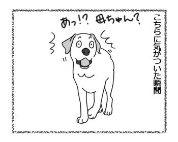 羊の国のラブラドール絵日記シニア!!「主演男優賞」4