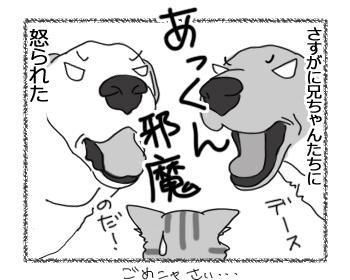 羊の国のラブラドール絵日記シニア!!「あっくんのため!」4