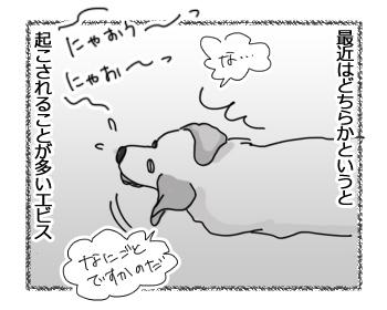 羊の国のラブラドール絵日記シニア!!「棚の上のエビスくん」2