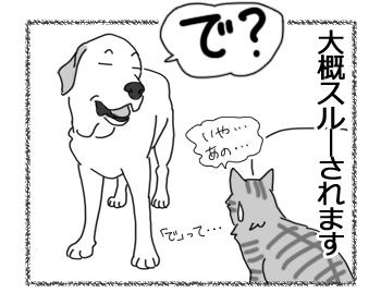 28062016_dog2.jpg