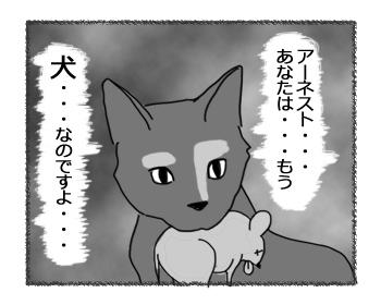 29042016_cat5.jpg