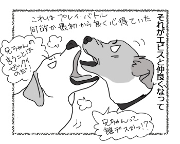 30052016_dog2.jpg