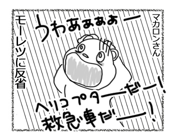 羊の国のラブラドール絵日記シニア!!「大反省の日曜日」4