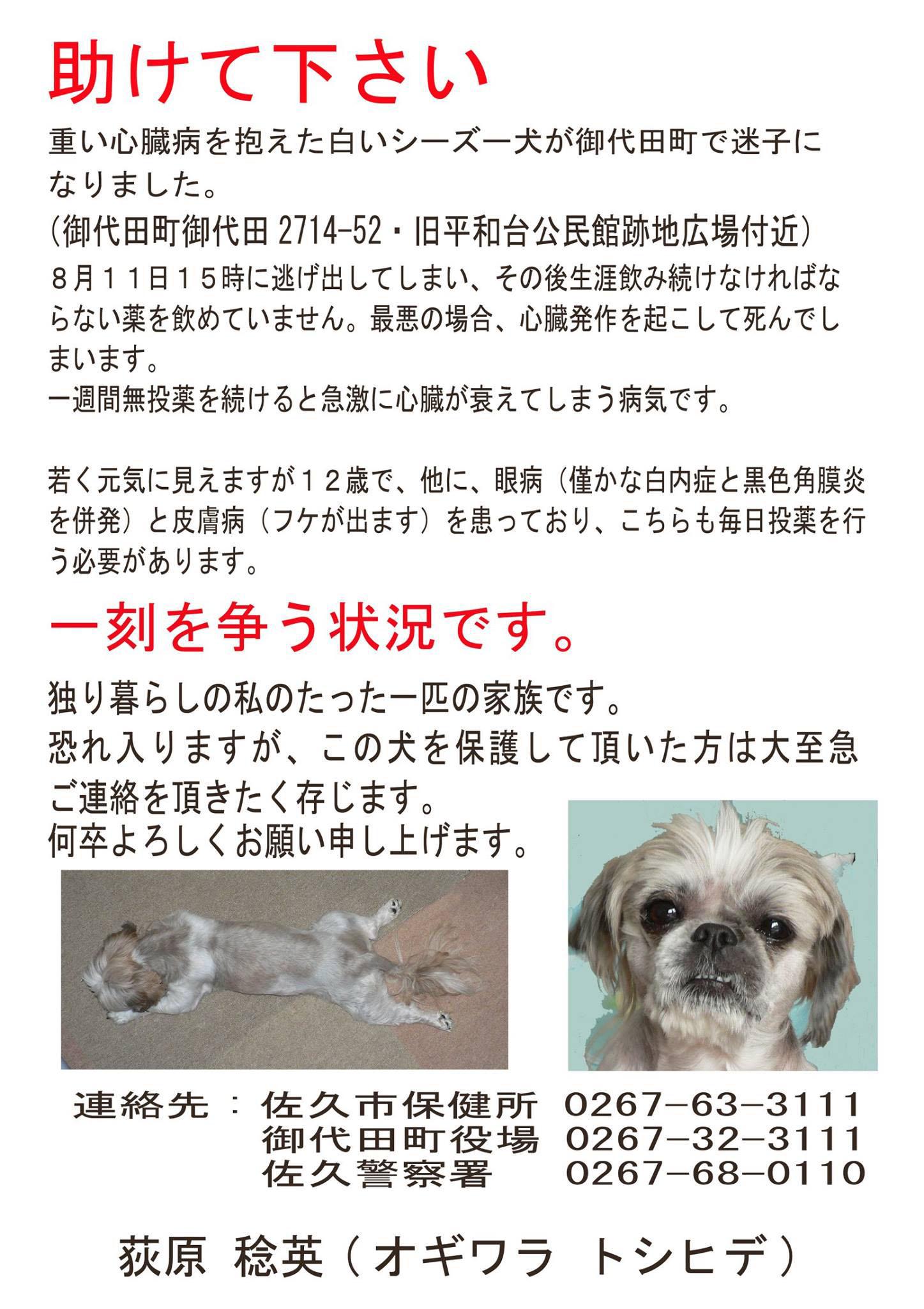 hanzo_019_o.jpg