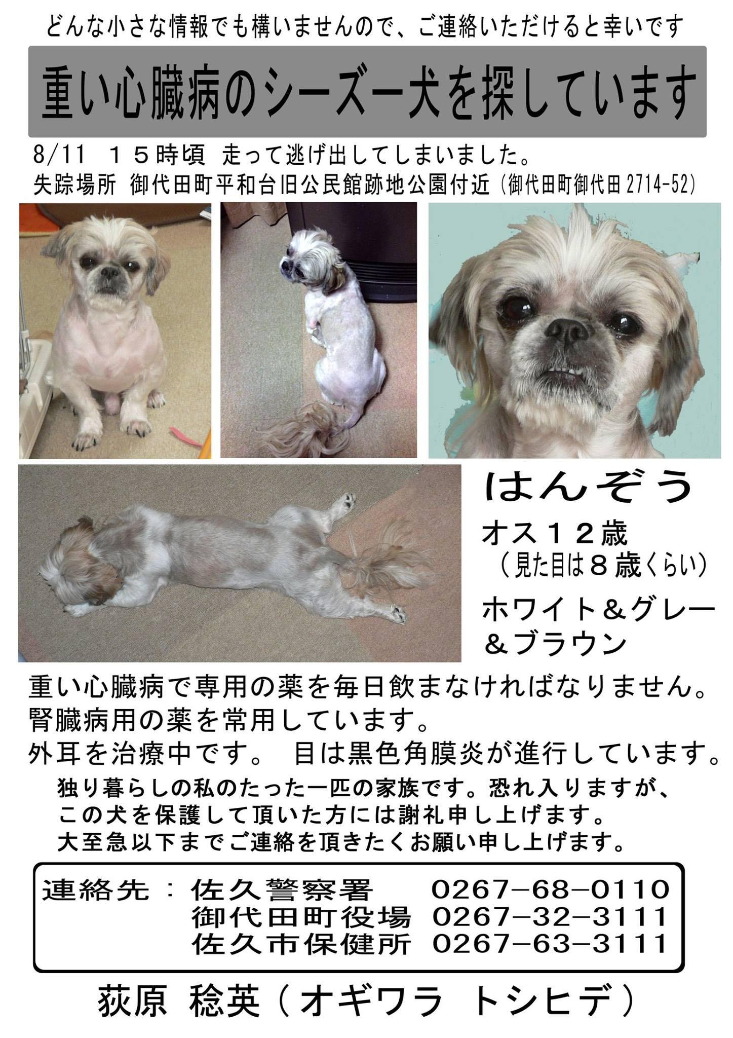 hanzo_104_o.jpg