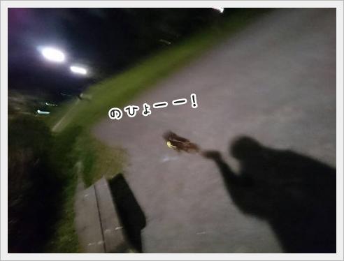 fc2_2016-04-14_03.jpg