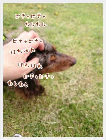 fc2_2016-04-27_04.jpg