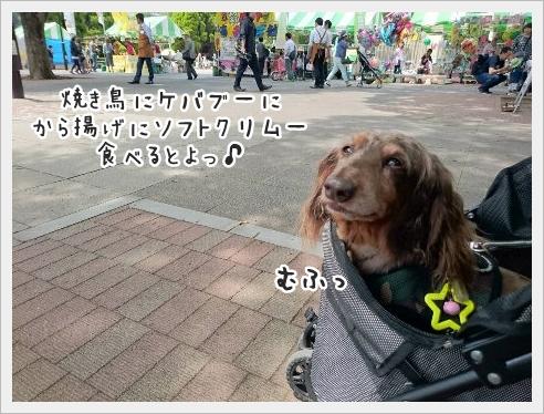 fc2_2016-05-16_09.jpg