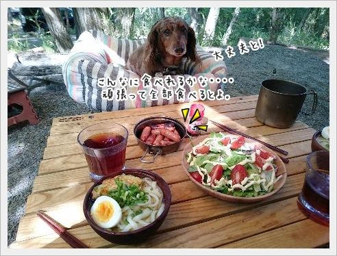 fc2_2016-05-31_11.jpg