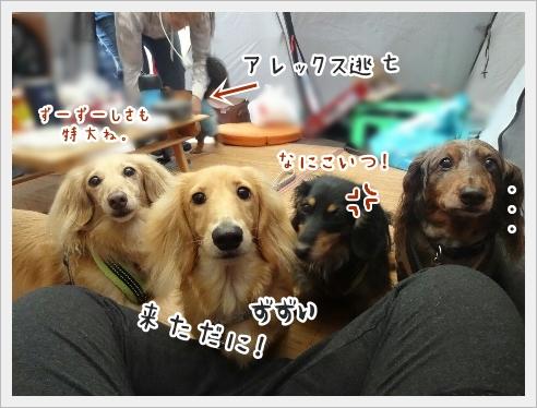 fc2_2016-07-23_02.jpg