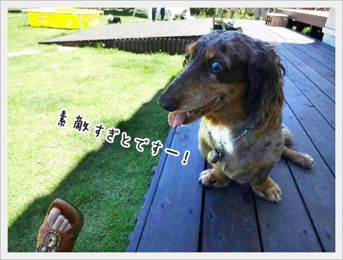 fc2_2016-08-02_04.jpg