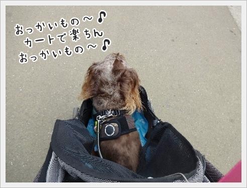 fc2_2016-09-13_02.jpg