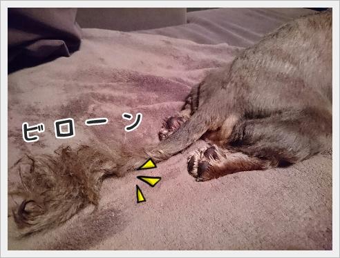 fc2_2016-09-23_05.jpg