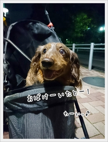 fc2_2016-09-26_03.jpg